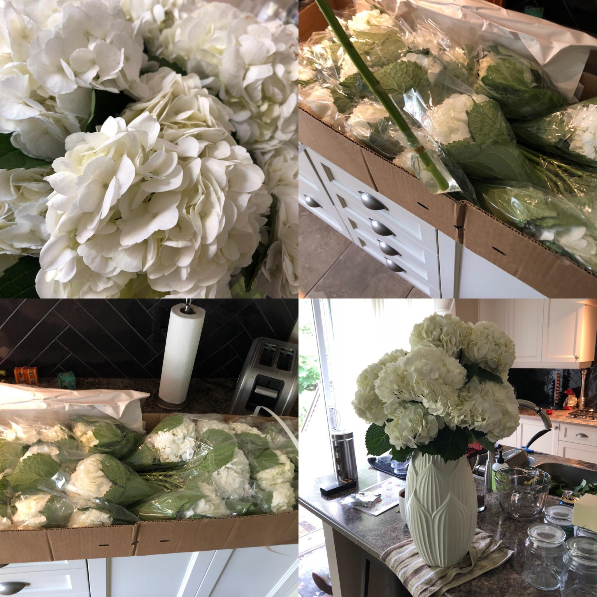Wholesale Wedding Flowers Costco Receptions Costco Bulk Flowers Review Weddingplanning Bulk In 2020 Costco Wedding Flowers Wholesale Flowers Wedding Costco Flowers
