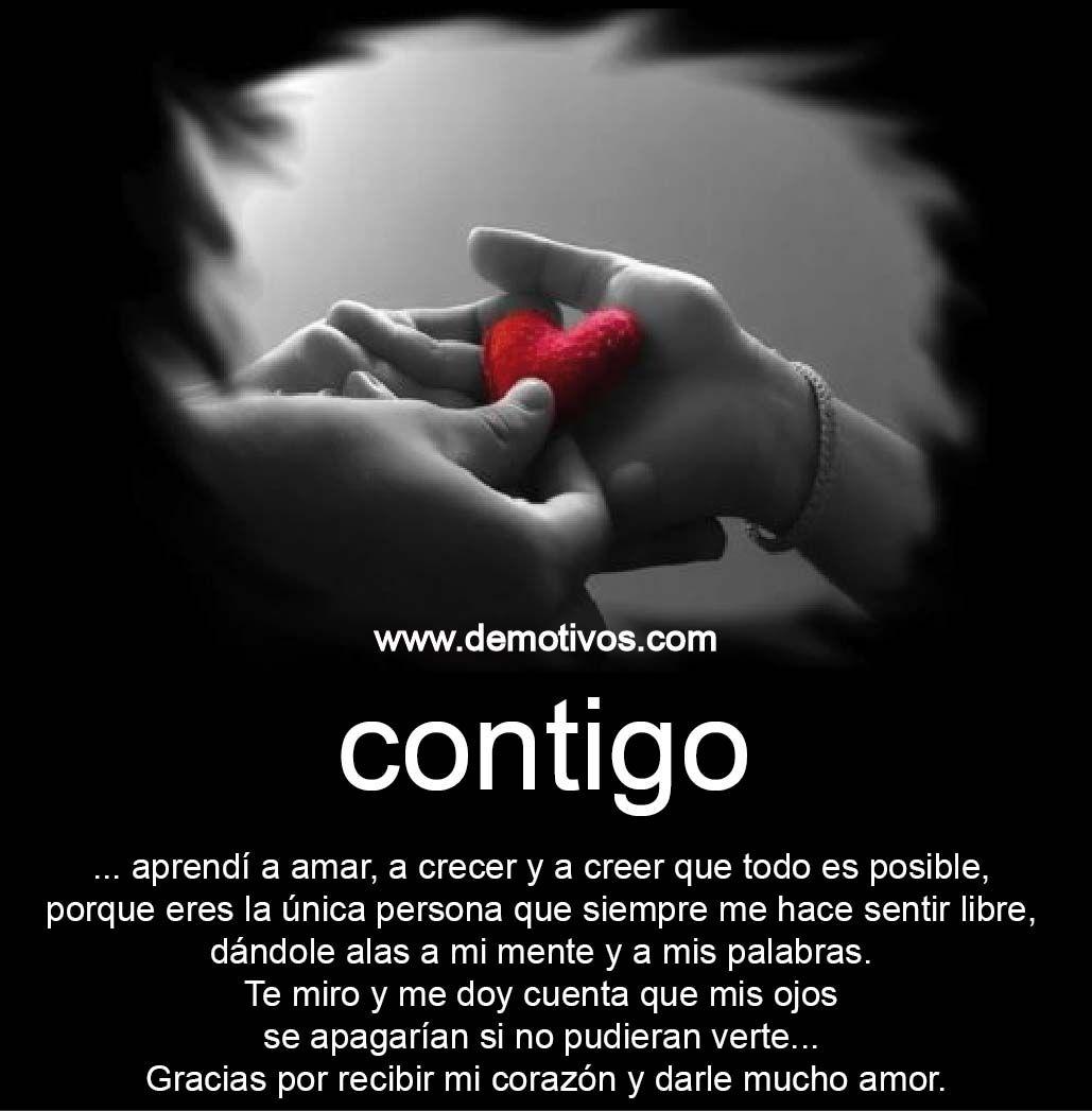 Te Quiero Mucho Mi Amor Frases 93401 Loadtve
