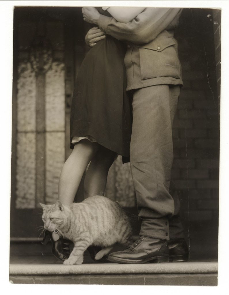 All sizes   Soldier's goodbye & Bobbie the cat, ca. 1925-ca. 1945, Sam Hood   Flickr - Photo Sharing!