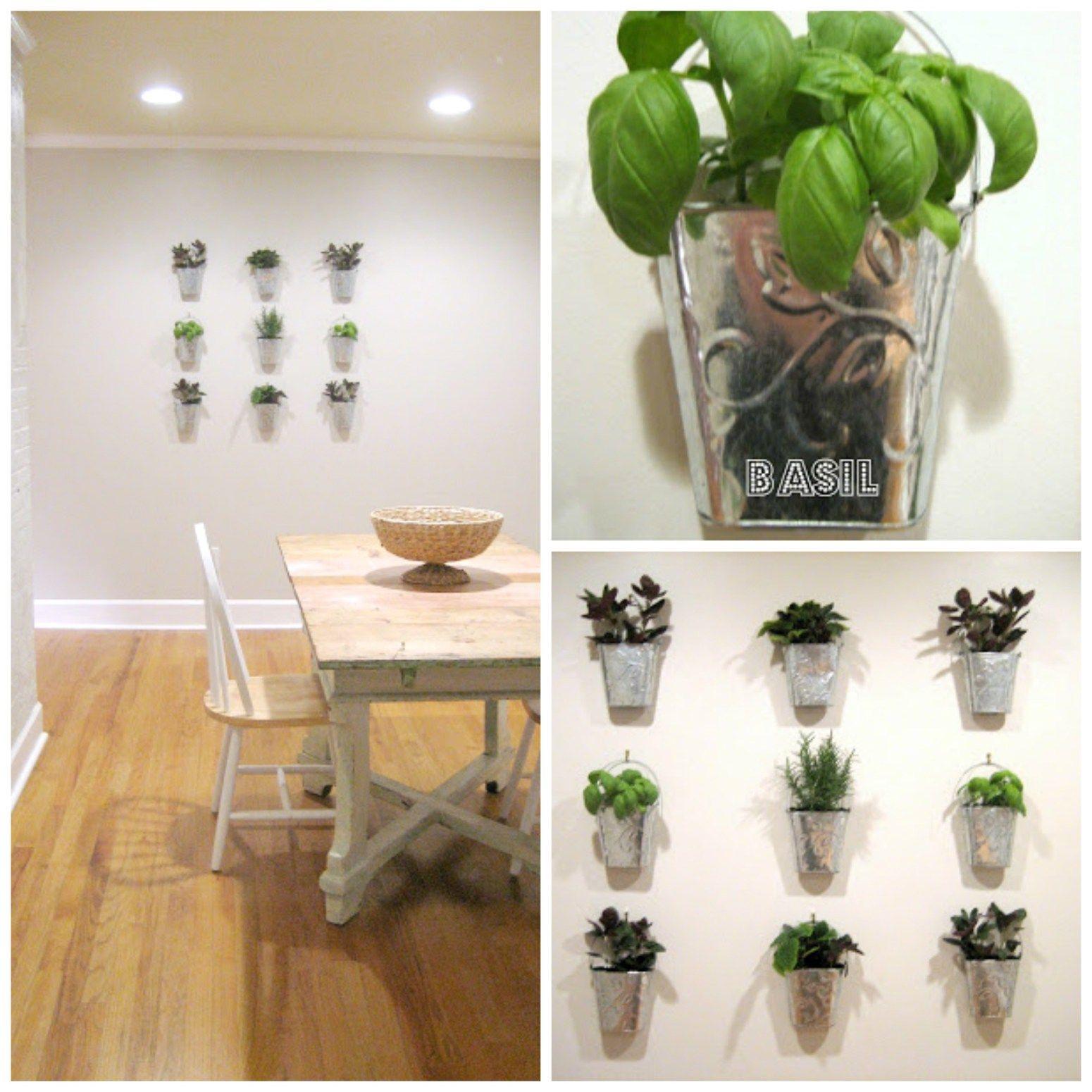 guest project make a kitchen garden wall garden on indoor herb garden diy wall kitchens id=48059
