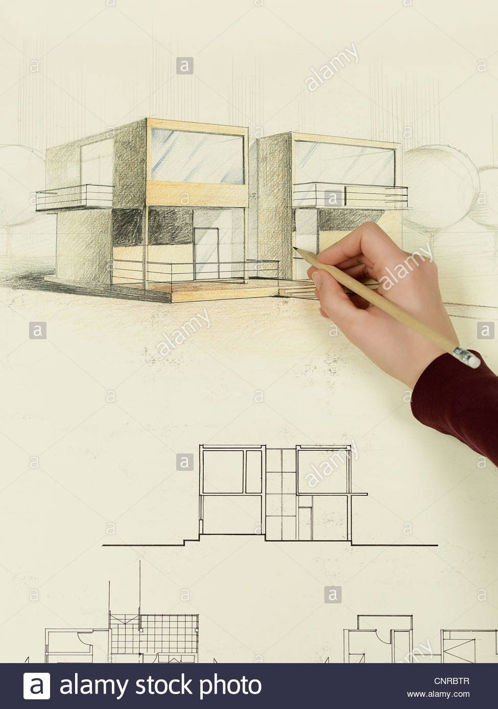 Modern House Perspective With Floor Plan Woman S Hand Drawing Architectural Perspective Of Modern Modern House Floor Plans Modern