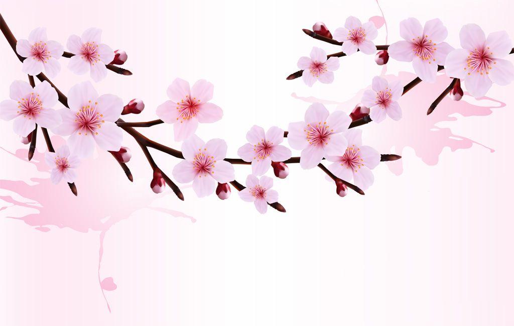 「桜 イラスト」の画像検索結果