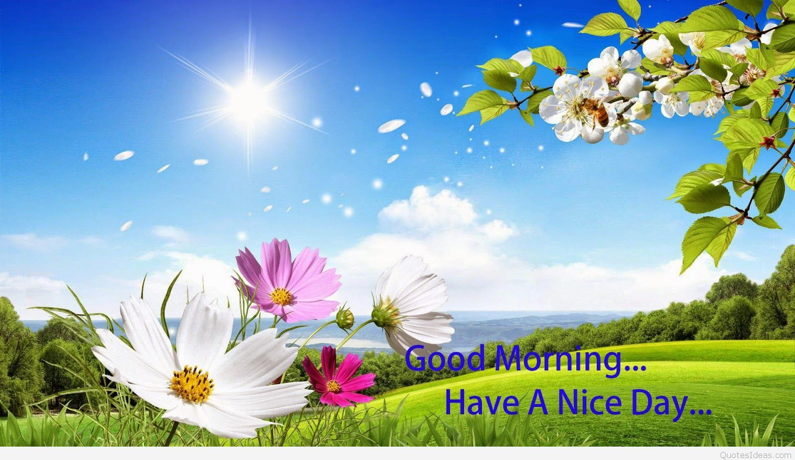 Good Morning 3d Wallpaper Download Good Morning Wallpaper Good Morning Picture Good Morning Animation