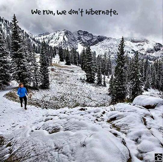 We run, we don't hibernate.