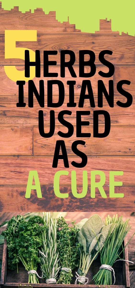 5 HERBS THE INDIANS USED AS A CURE  #naturalcures