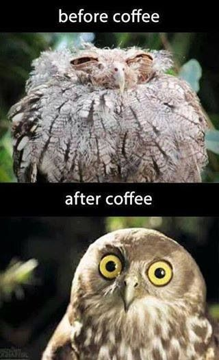 Before & after coffee