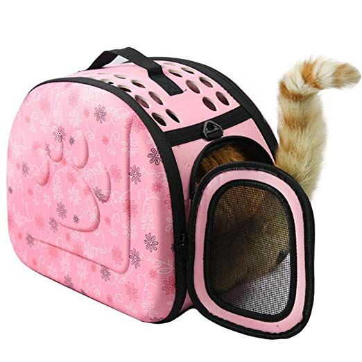 Tierbedarf Fur Katze Und Hund Outdoor Umhangetasche Tragbare