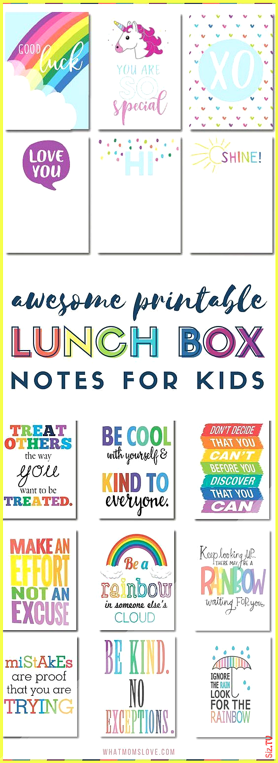 The Best Bento Boxes Supplies 038 Tools To Take Your School Lunches From Boring To Blast-Off The Be