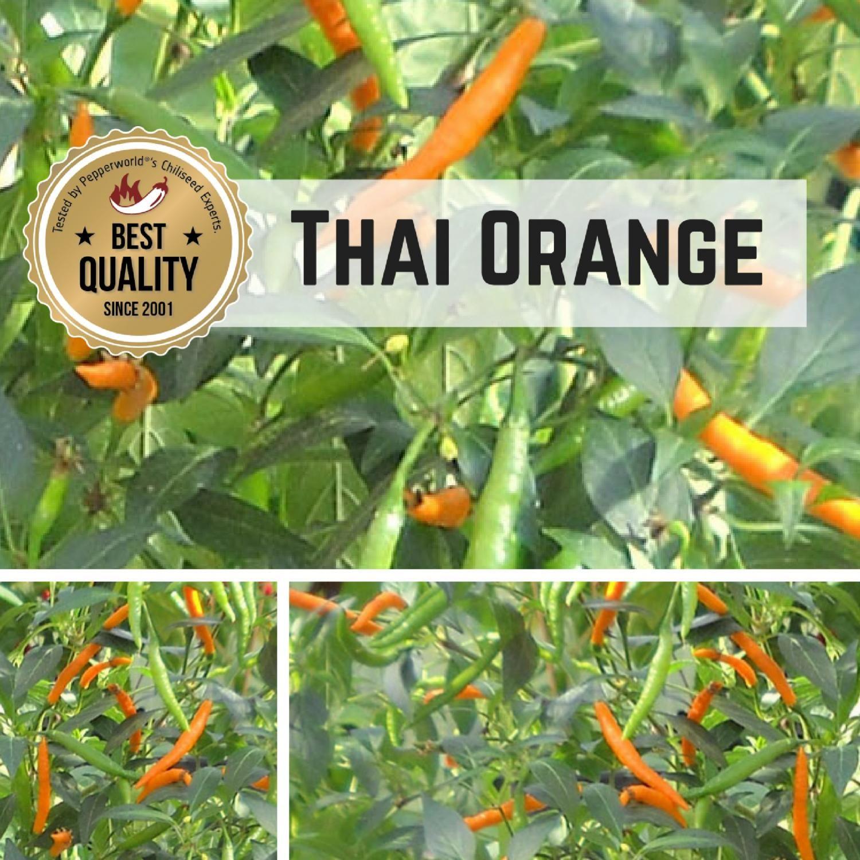 Thai Oranger Ginger Savory Relish Recipes Food Cooking Recipes