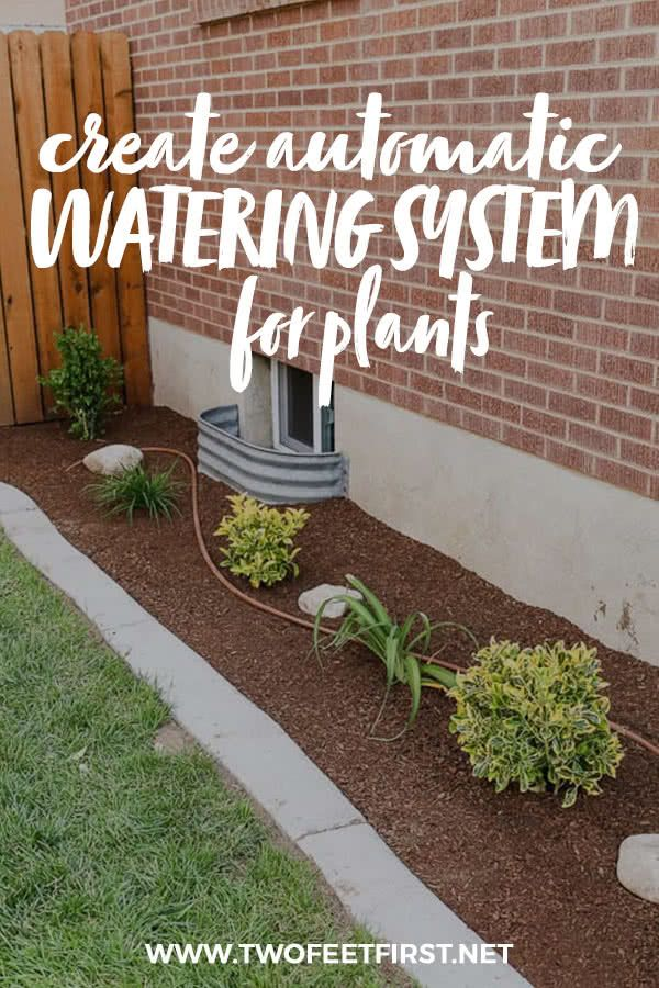 Automatic Watering System For Plants (With images) Drip