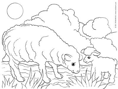 Coloring Book Sheep Google Search Farm Animal Coloring Pages Animal Coloring Pages Baby Coloring Pages