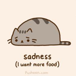# sad pusheen cat