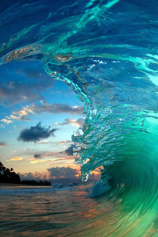 Flying Fish Waves Beautiful Ocean Beautiful Nature
