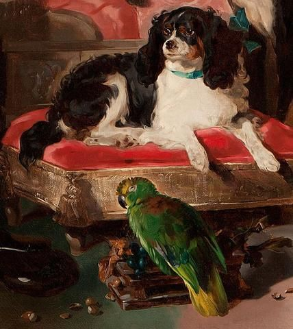 8 Facts Every Cavalier King Charles Lover Needs To Know King Charles Cavalier Spaniel Puppy Cavalier King Charles Spaniel King Charles