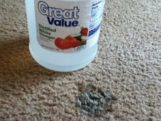 How To Remove Slime Cleaning Hacks How To Clean Carpet