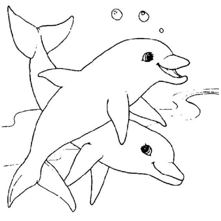 Animal Coloring Pages For 9 Year Olds Dolphin Coloring Pages Animal Coloring Pages Super Coloring Pages