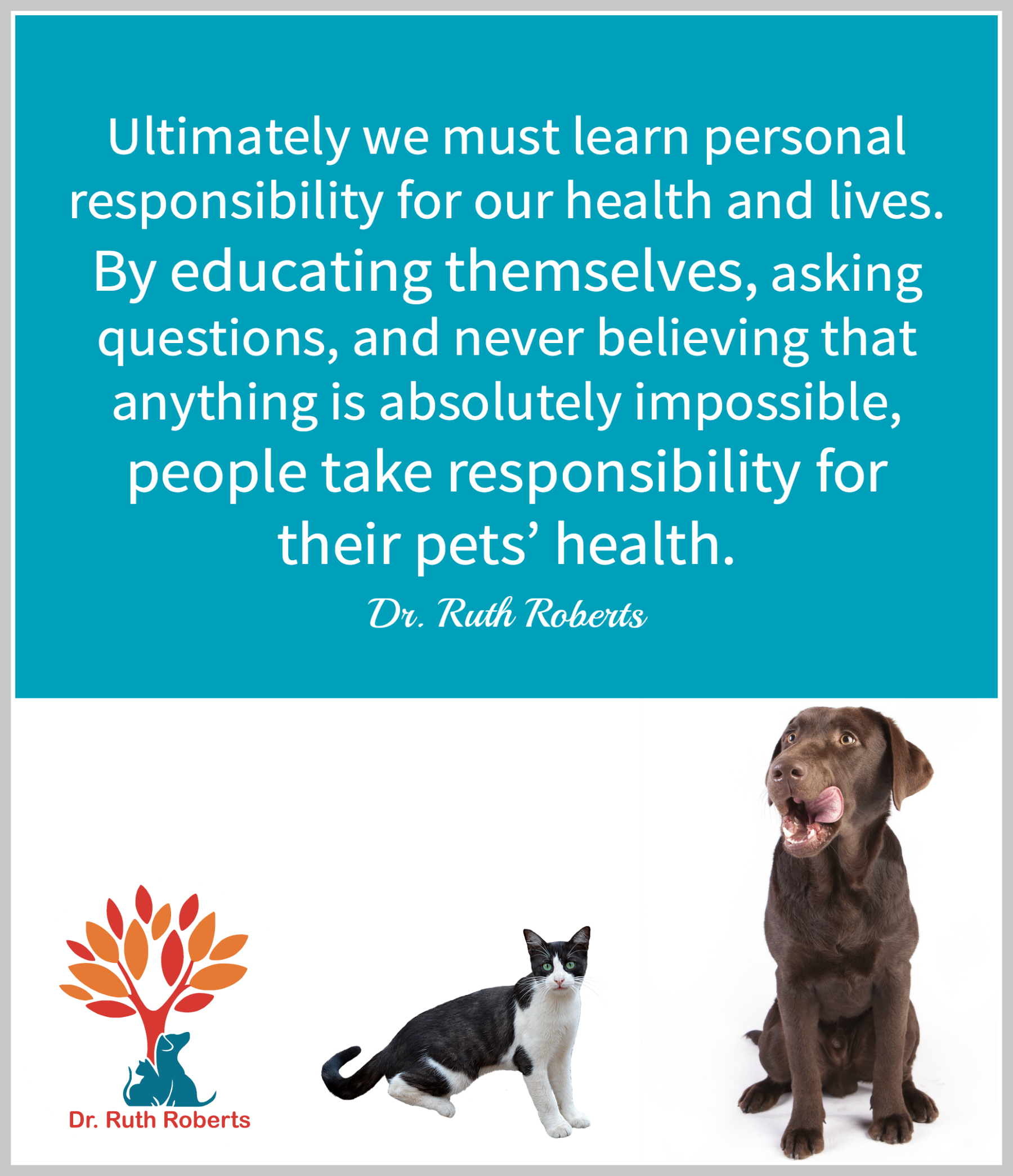 Taking responsibility for our pets health. quotes