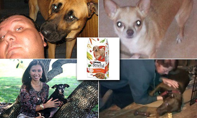 Dog Owners Describe The Horrific Effects They Claim Purina Beneful