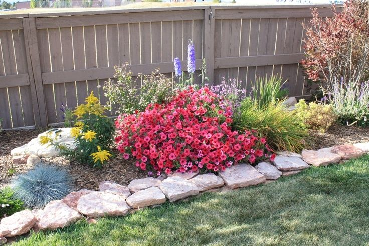 Colorado Gardening | Xeriscape front yard, Colorado ...