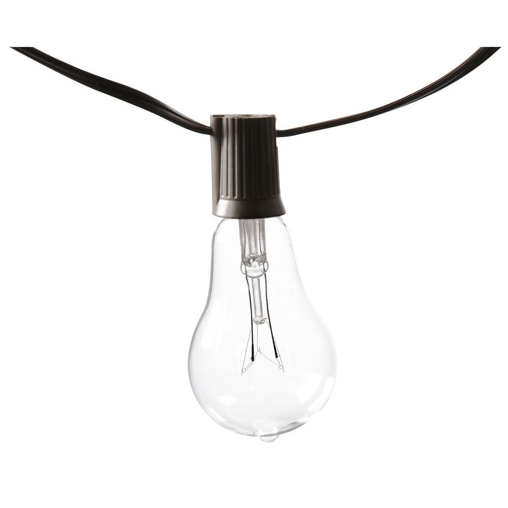 Edison Decorative PS50 Clear Bulb String Lights (10-Count)-KF01615 ...