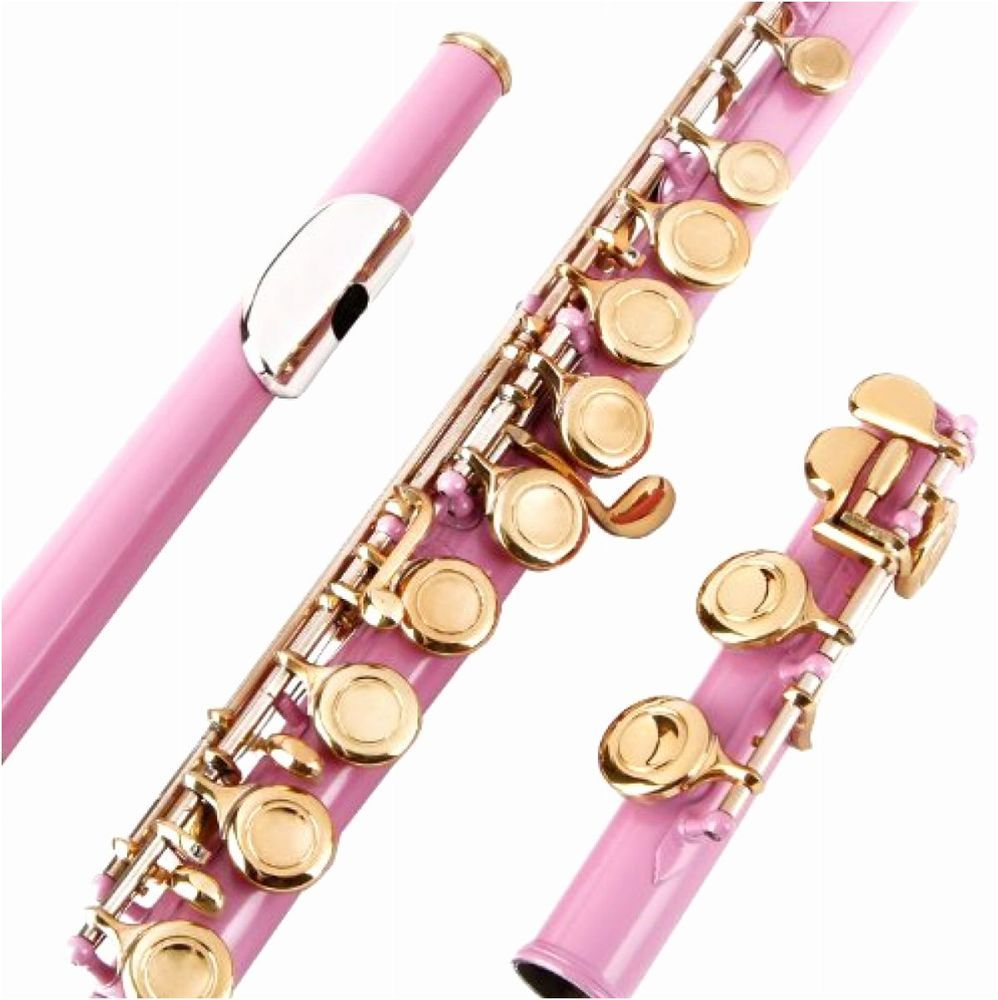 Pink Flute Closed Hole C Flute for Beginners Kids Student + Case & Kit Glory #GLORY