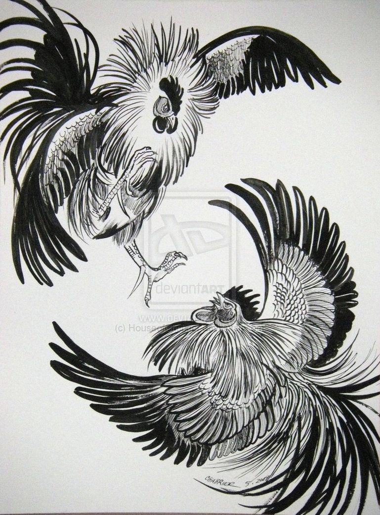 Fighting Rooster Drawing Google Search Rooster Art Fighting Rooster Rooster Tattoo