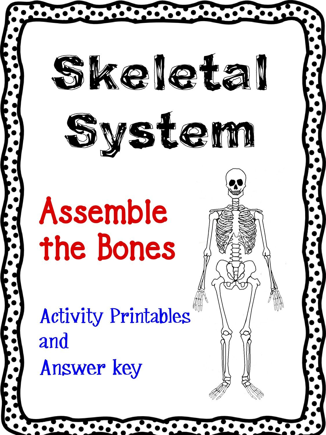 Skeletal System Article Task Cards And Graphic Organizer