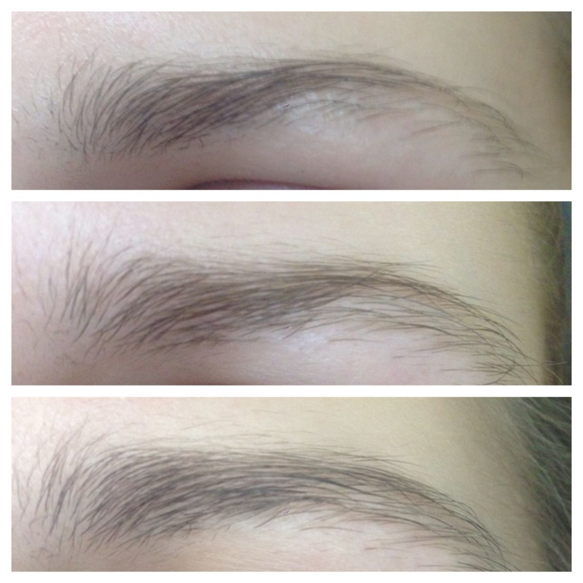 Eyebrow Growth 3 Weeks After Using Castor Oil Mixed With Vaseline