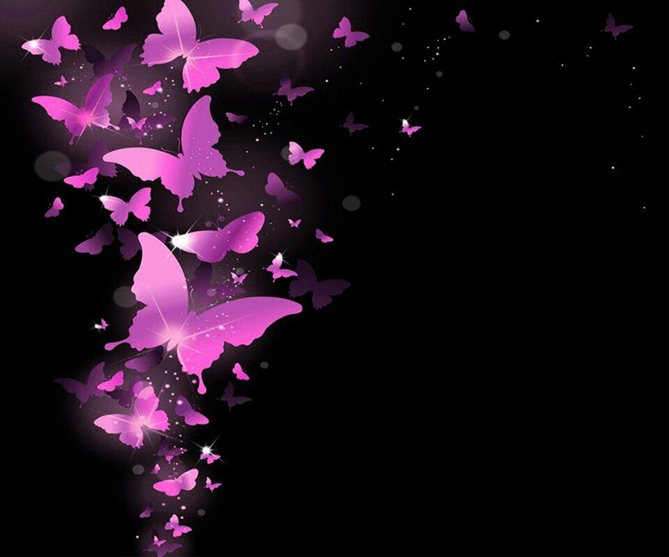 Hot Pink Butterflies Wallpaper Butterfly Pinterest