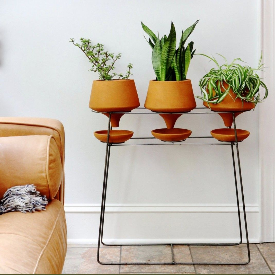 Pin by Diane Nelson on Crazy for Plants Decor, Console