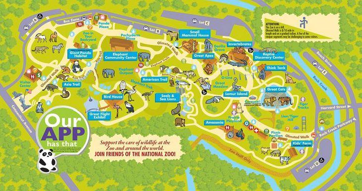 Visit The Smithsonian S National Zoo Vacation Washington
