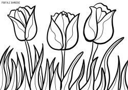 Stampate E Colorate I Tulipani Di Disegni Da Colorare Natalizi