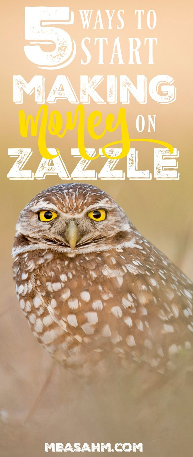 If you want to figure out how to make money on zazzle, start with these 5 big money-makers!