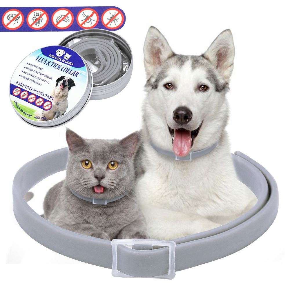 Dog Flea Collar Fleas Flea And Tick Cat Pet Supplies
