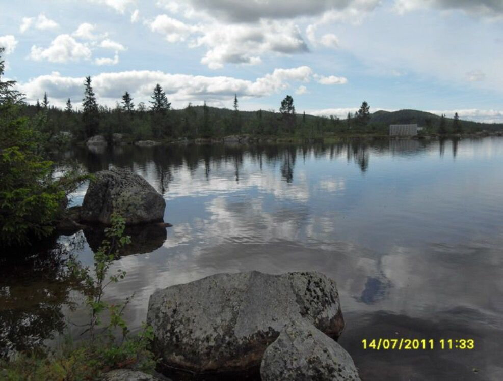 14.07.11 Hedalen i Valdres / Helseren