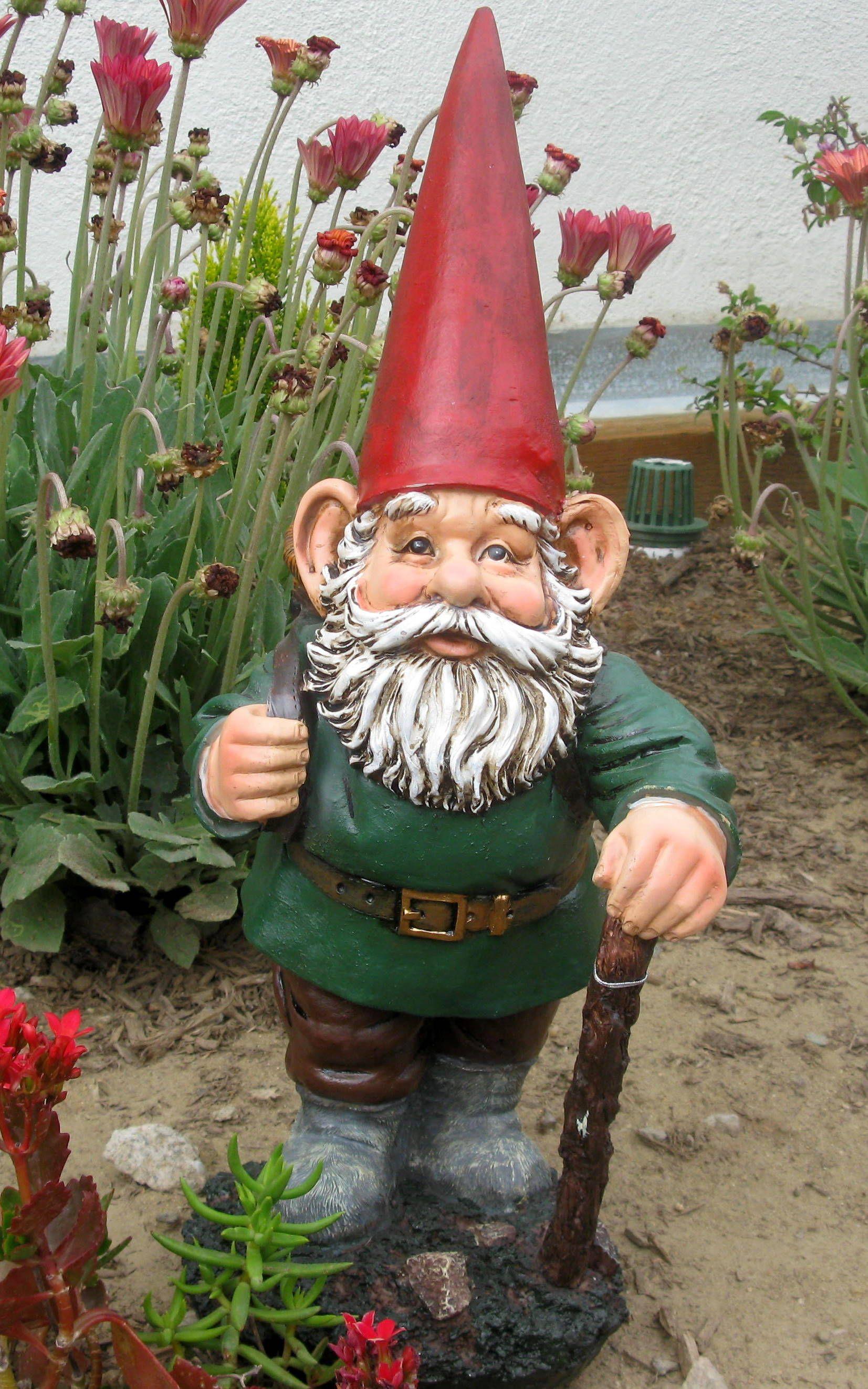 Gnome In Garden: Gnomes, Gnome Garden, Gnome