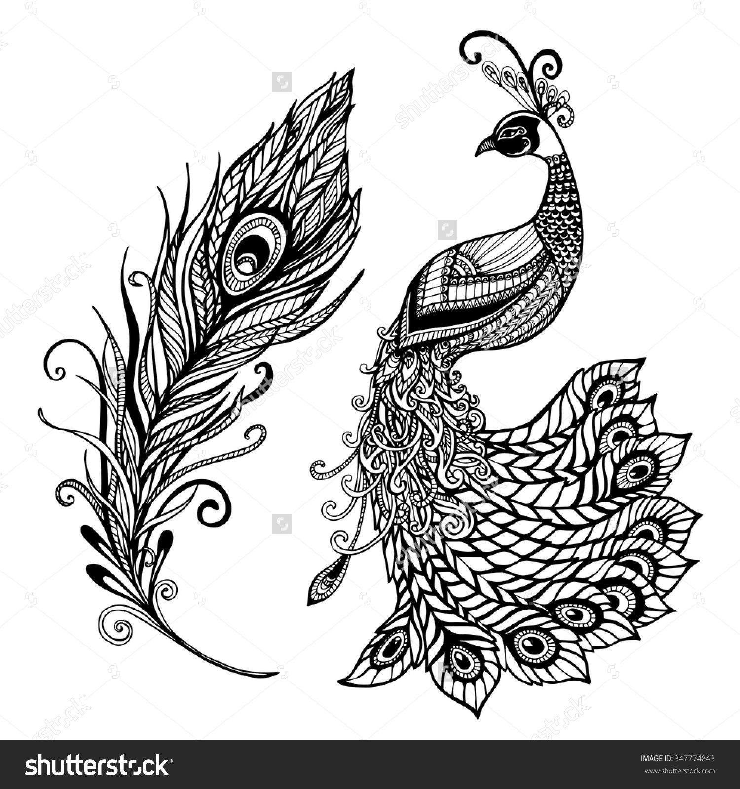 Decorative Stylized Peacock Bird Feather Art Deco Design Template