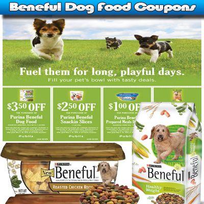 Beneful Dog Food Coupons Dog Food Coupons Dog Food Recipes