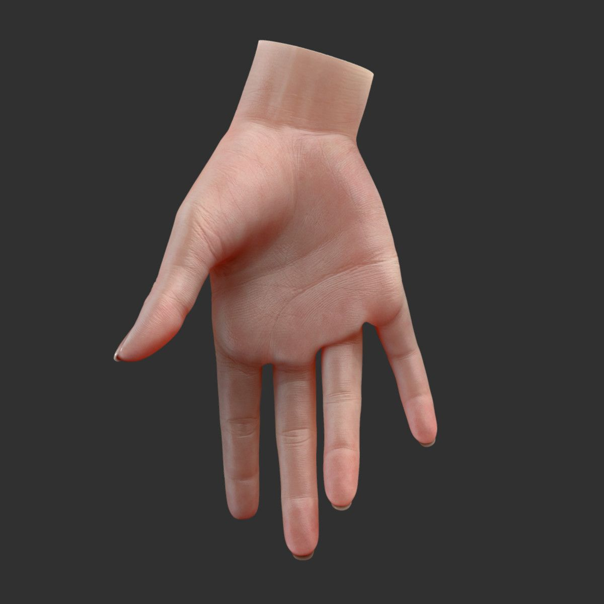 waldo-pack 3d porn 2 3d realistic female hand rigged | Hands | Pinterest | 3d, Hands and Models