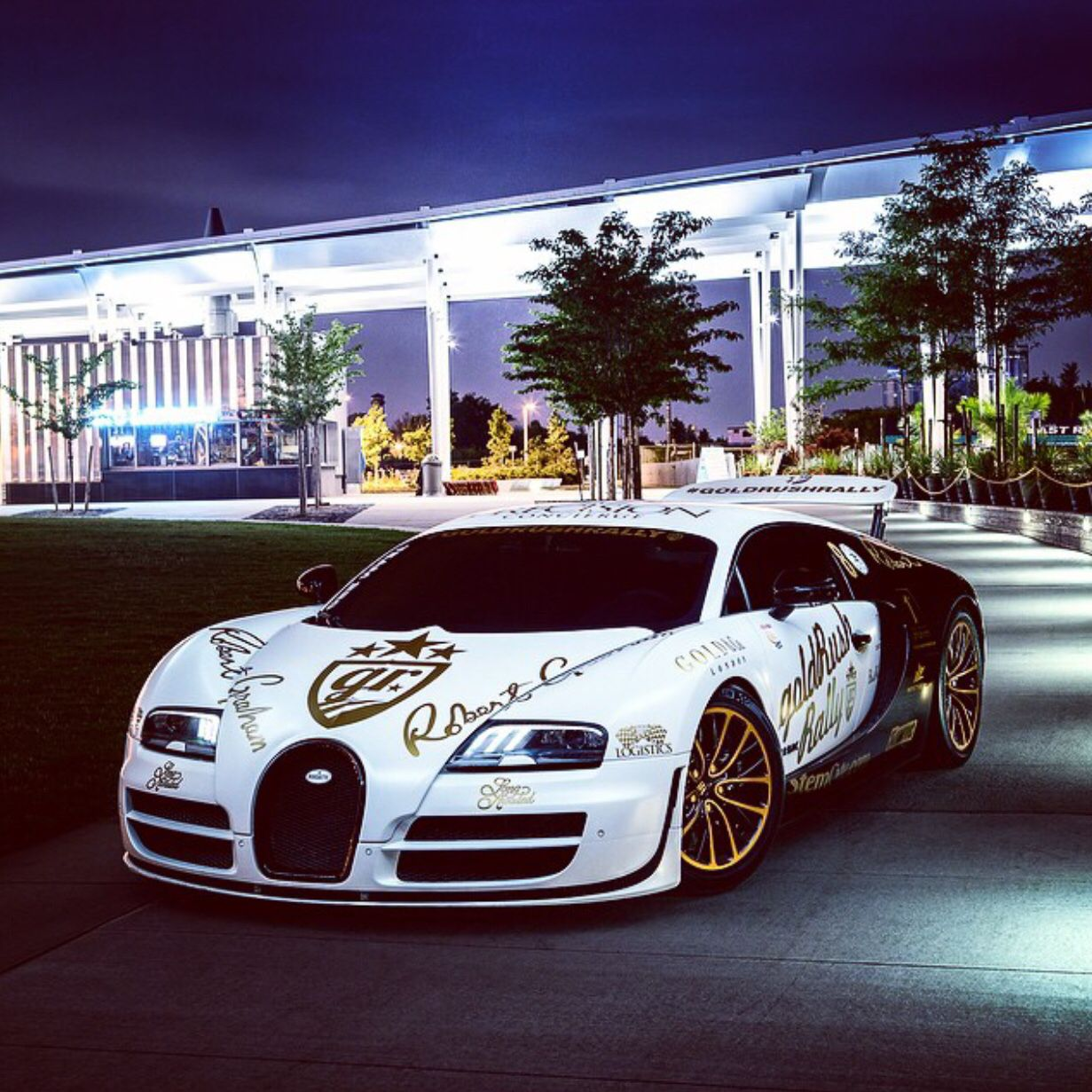 Bugatti Veyron Super Sport painted in White and Black ...