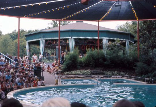 The Dolphin Show At Six Flags Over Mid America St Louis Missouri C70s Six Flags New Madrid Great America