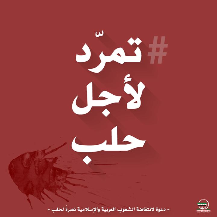 إذا ظننا أننا سنشهد في حلب نهاية الثورة فقد انتصر الأسد علينا حقا الثورة أرضها القلب وسماؤها الفكر وثمرها العمل الصادق الذي لا ينتهي إلا بنهاية العمر هذا ما ت