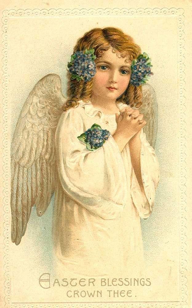 сибири находимся, картинки розыск ангелочка первый