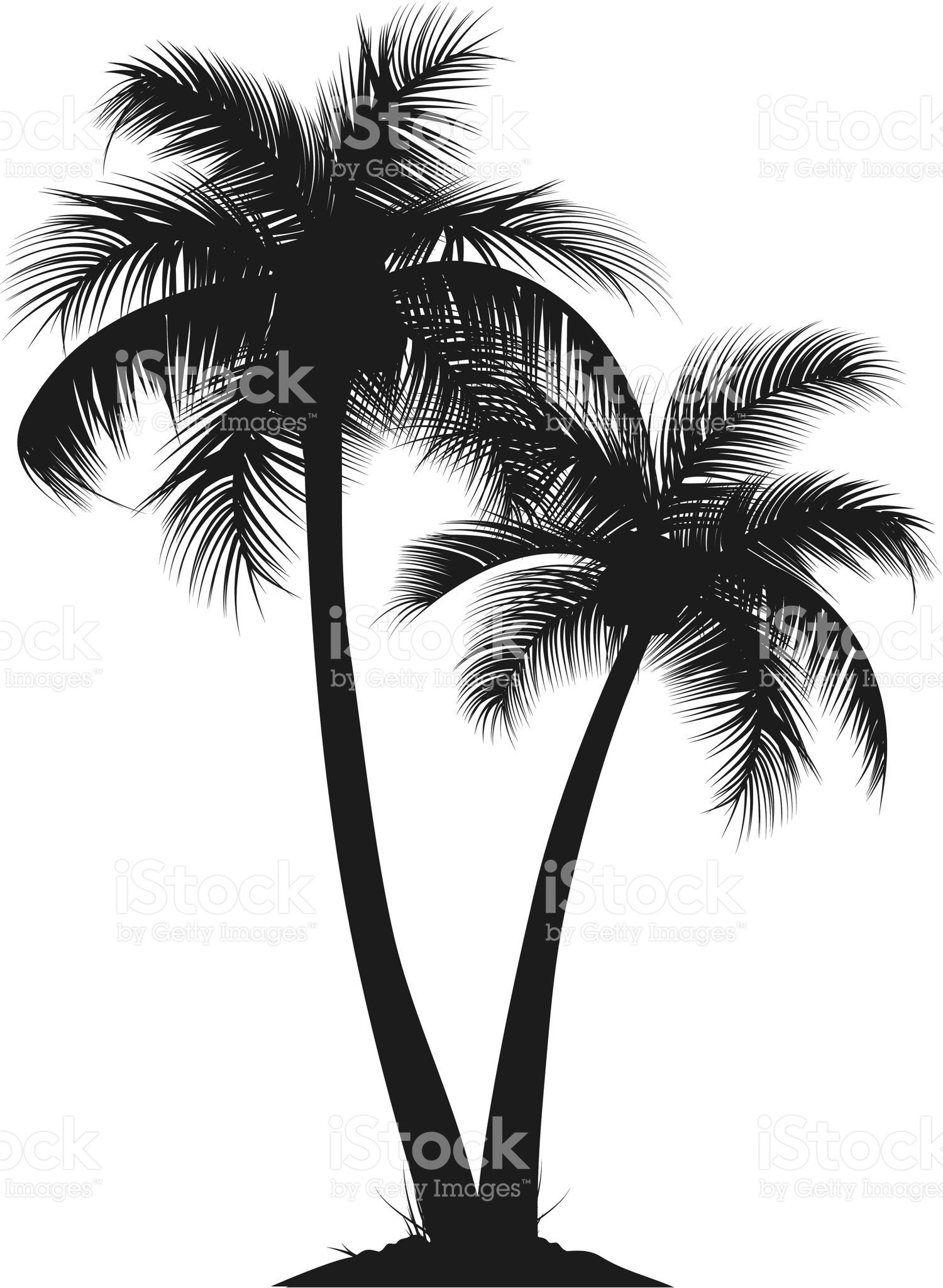 two vector silhouette of palm trees smart layers and elements