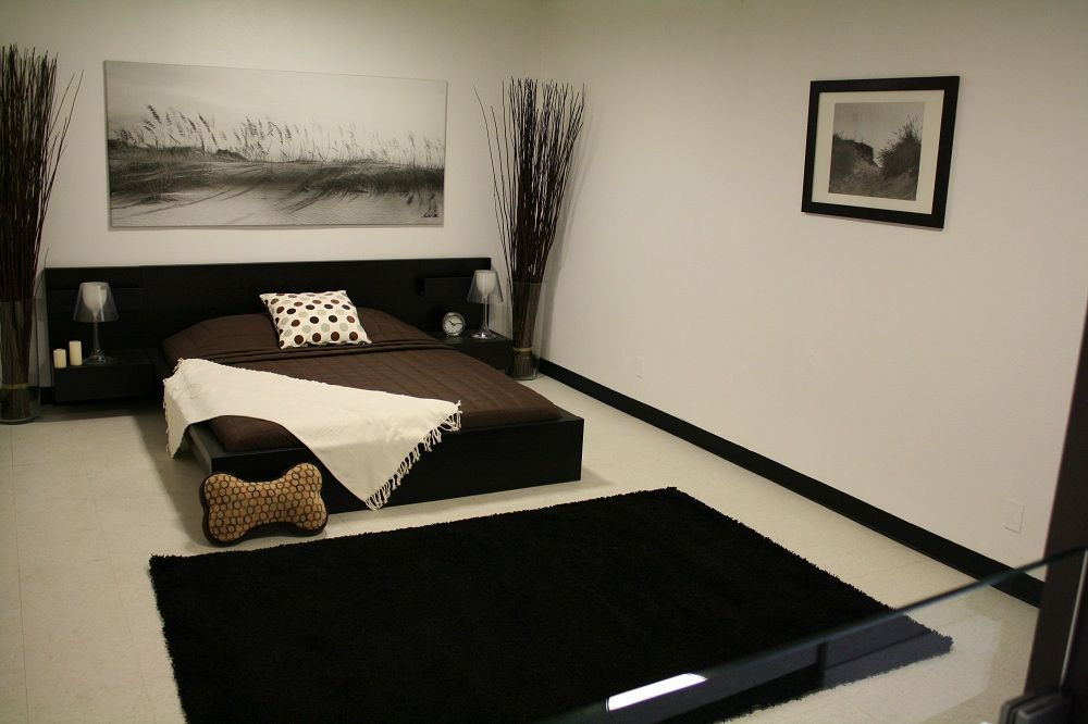 D Pet Hotels Hollywood Los Angeles Ca Usa Luxury Resort Is A Sq Ft That Features The Finest And Most