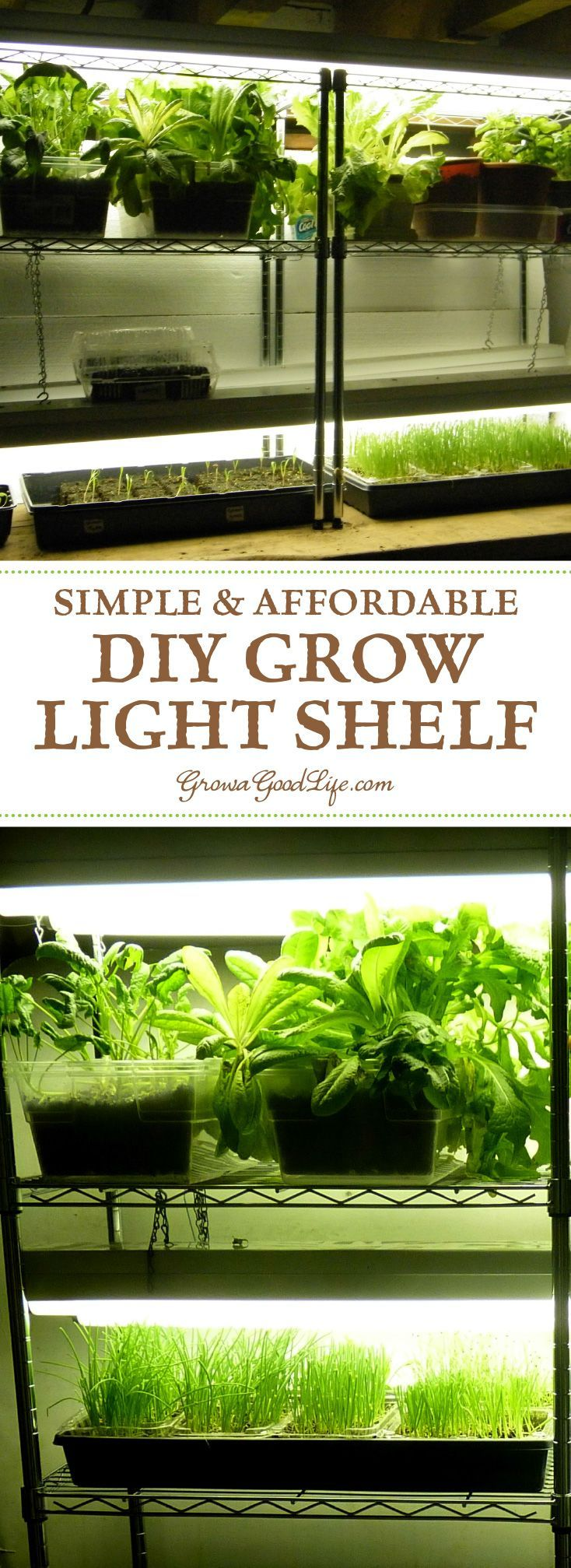 Build A Grow Light System For Starting Seeds Indoors Growing Plants Indoors Herbs Indoors And