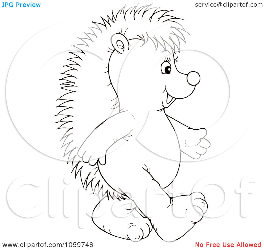 hedgehog coloring pages - Google keresés | ősz | Pinterest | Hedgehogs
