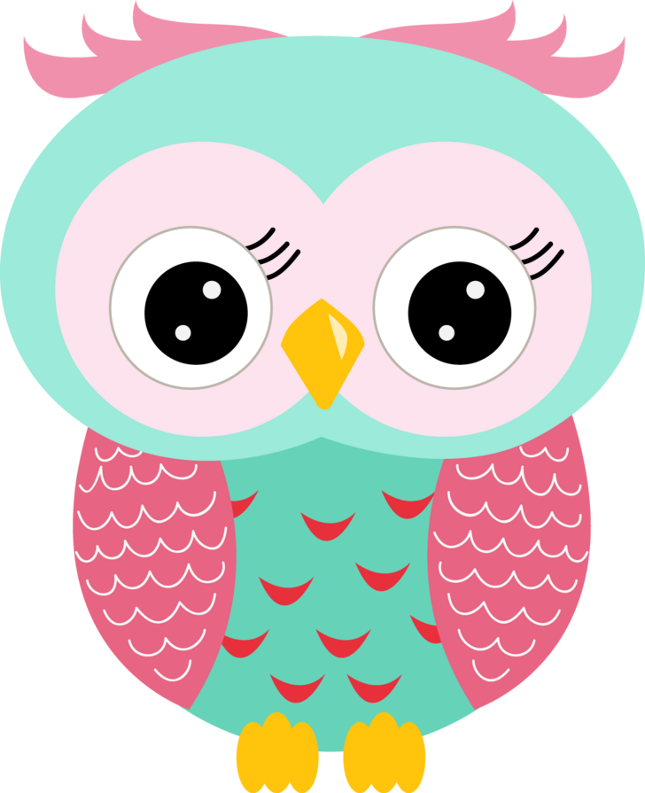 Image result for cute owl clip art""