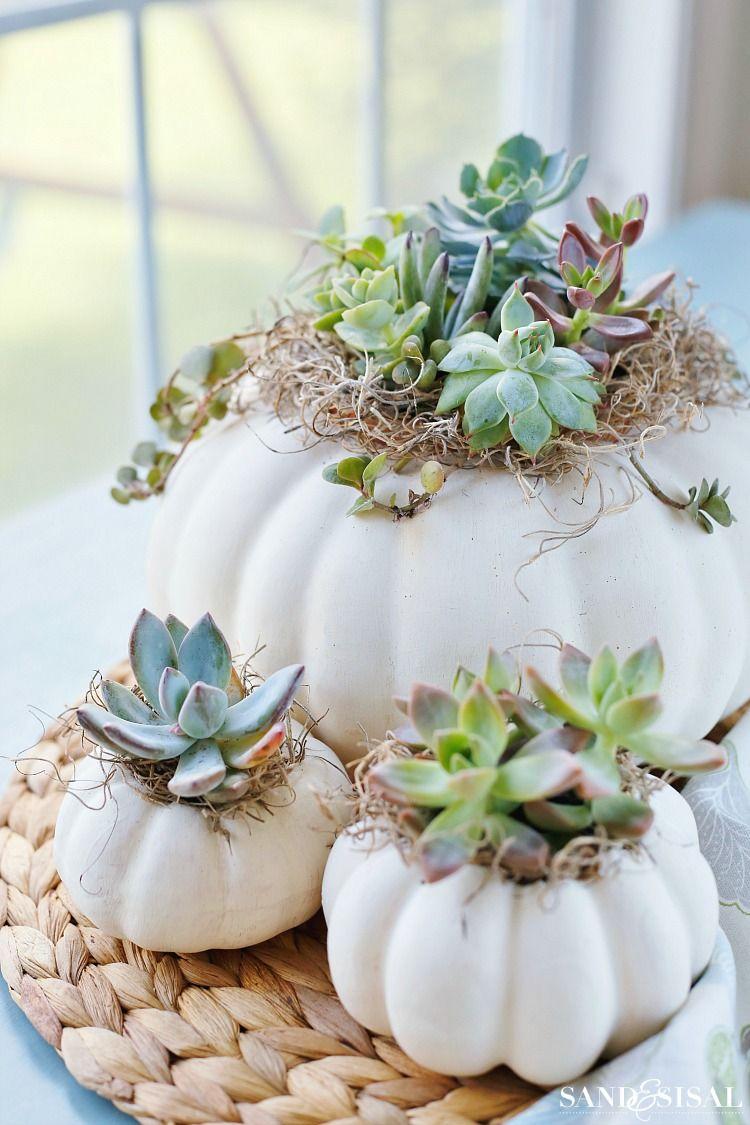 DIY Succulent Pumpkin Centerpiece - Sand and Sisal