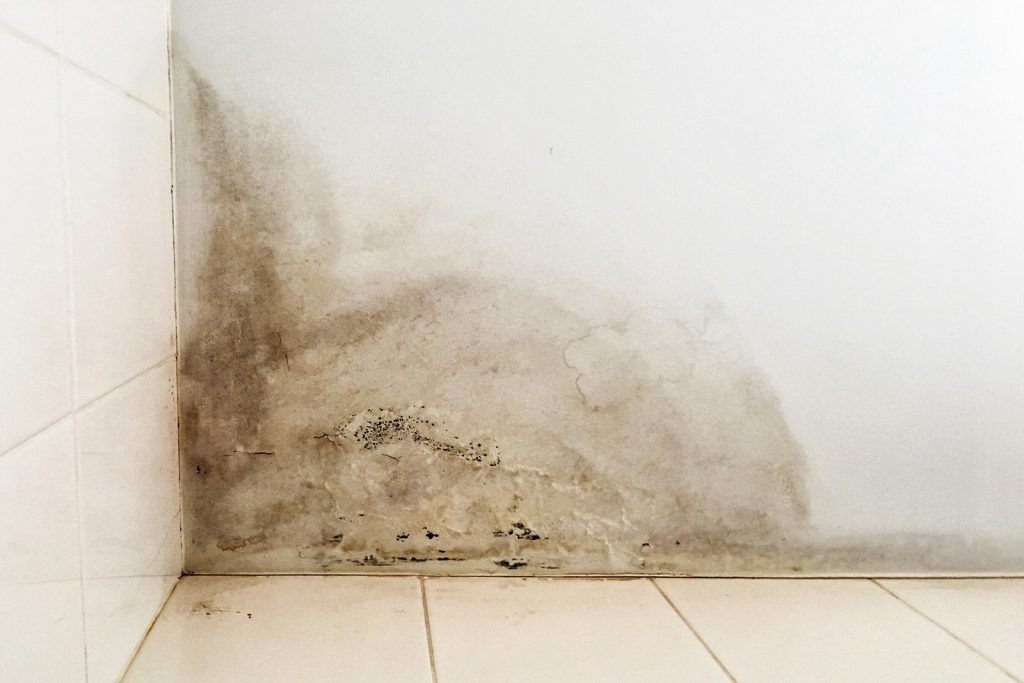 Cavity Wall Insulation Problems with Damp Claims | Cavity